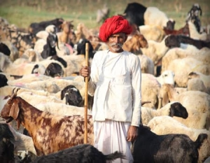 Essence of Rural India Tour package