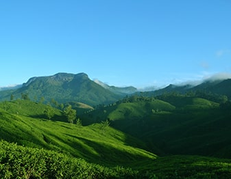 munnar honeymoon luxury tour package in india
